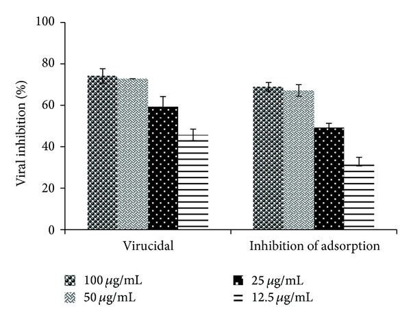 The effect of the Adenanthera pavonina sulfated polysaccharide (SPLS Ap ) on poliovirus type 1 (PV-1) particle (virucidal activity) and in virus adsorption on HEp-2 cells by plaque reduction assay. The percentage of viral inhibition (%VI) is expressed as the mean ± SD of triplicate independent experiments.