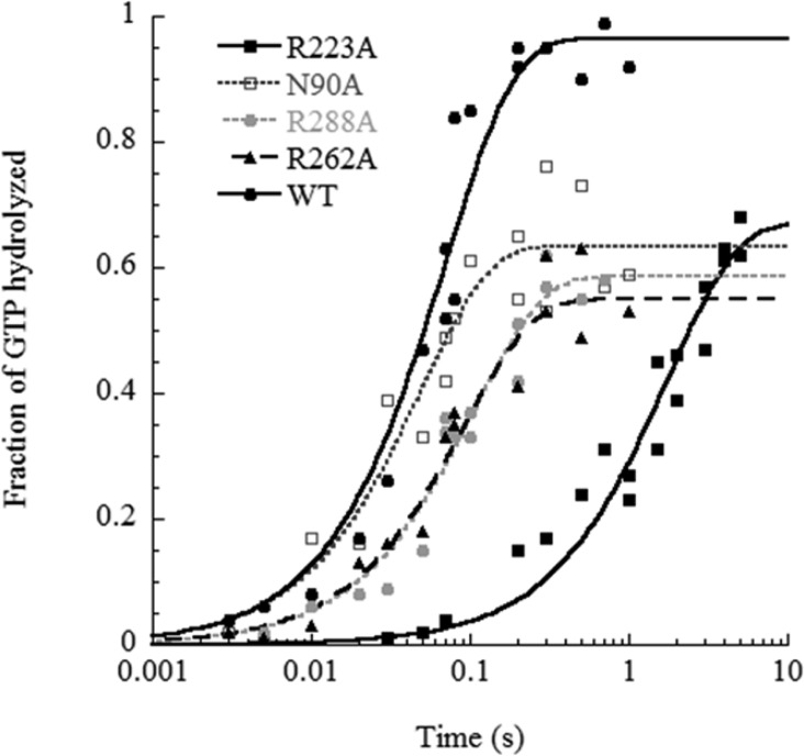 Time courses of ribosome-catalyzed GTP hydrolysis of ternary complexes containing Tyr-tRNA Tyr and the indicated EF-Tu mutations. Experiments were performed in 50 mM HEPES pH 7, 30 mM KCl, 70 mM NH 4 Cl, 10 mM MgCl 2 , 10 μM GTP, 3 mM phosphoenolpyruvate, 50 μg/mL of pyruvate kinase, and 1 mM DTT at 20 °C. Lines for each mutant indicate the best fit to a single binding equilibrium adjusted to an extent and a k obs. Values for all mutants are given in Table 2