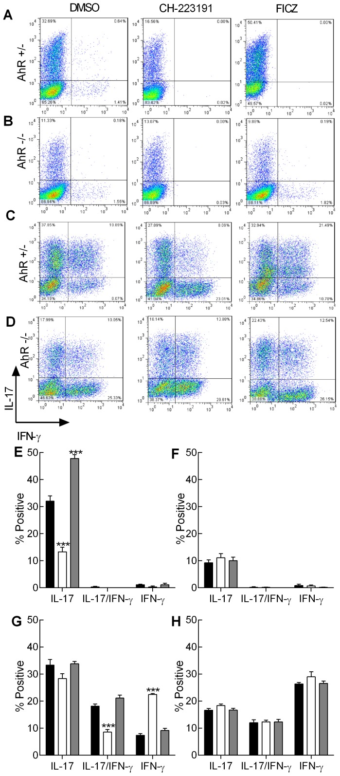 The effect of AhR modulation on Th17 and Tc17 cell frequency. Naïve CD4 +  cells from AhR +/−  (A and E) or AhR −/−  mice (B and F) and naïve CD8 +  cells from AhR +/−  (C and G) or AhR −/−  mice (D and H) were polarised under Th17/Tc17 conditions for 5 days. Cells were then stimulated with PdBU and ionomycin in the presence of brefeldin A. The polarised cells were then permeabilised and stained using fluorescent anti-IL-17A (PE [Y-axis]) and -IFN-γ (APC [X-axis]) labelled antibodies. Cells (25000) were analysed by flow cytometry. The cells were cultured in the presence of AhR antagonist (CH-223191) (white bar) or AhR agonist (FICZ) (grey bar) both formulated in DMSO or with an equivalent amount of DMSO alone (black bar). Representative quadrant analyses are illustrated (A–D). The percentage of cells positive for IL-17, IL-17 and IFN-γ or IFN-γ alone was calculated by subtracting the isotype controls from the positive cells in each quadrant and are illustrated as % positive cells (E-H; mean ± SE; n=3 independent experiments). Statistical significance of differences between DMSO control and AhR antagonist/agonist treated cells was analysed by one-way ANOVA. ***,  p