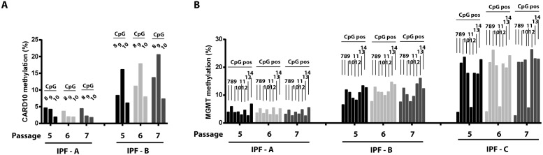 Stability of <t>DNA</t> methylation differences with cell passage. Three different IPF cell lines (A, B, and C) were assessed at passages 5, 6, and 7, and the DNA methylation for each cell line and each passage was compared. A) Shown are the methylation level of <t>CpG</t> sites 8, 9, and 10 in the upstream segment of the CARD10 promoter for IPF cell lines A and B at serial passage. B) Shown are the methylation levels of CpG sites 7–14 of the MGMT promoter for IPF cell lines A–C at serial passage.