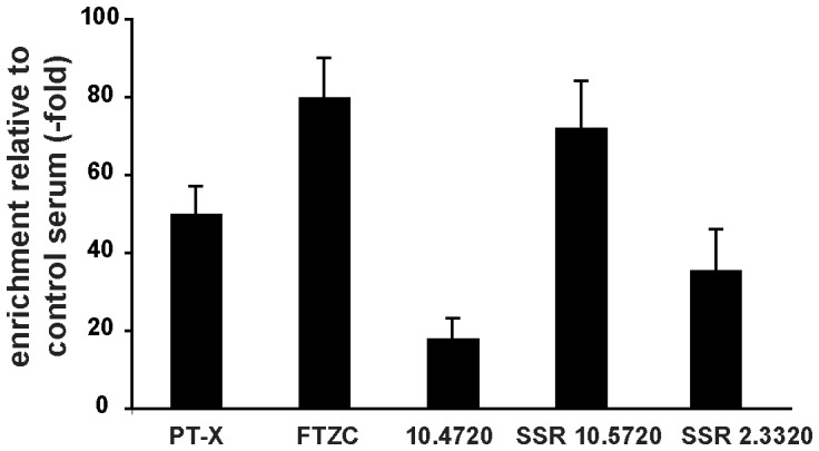 Validation of RBP33 targets. Quantitative RT-PCR assays were performed to confirm binding of three coding RNAs (pteridine transporter PT-X , Tb927.10.9080; flagellar transition zone component FTZC , Tb927.10.8590; and Tb927.10.4720) and transcripts derived from the SSR downstream gene Tb927.10.5720 or from the SSR downstream gene Tb927.2.3320.