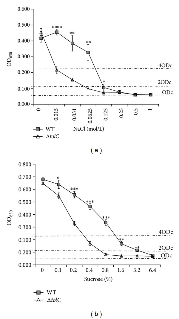 Effect of medium osmolarity on biofilm formation by the WT and Δ tolC strains as determined by crystal violet biofilm assay. Both strains were cultivated in 1/2 M9 medium supplemented with different concentrations of NaCl (a) or sucrose (b) at 28°C for 5 days. Biofilm formation was quantified, and the results are shown as means ± standard error of the mean. Significant differences between the WT and Δ tolC strains were determined using one-tailed unpaired Student's t -test. ∗ P