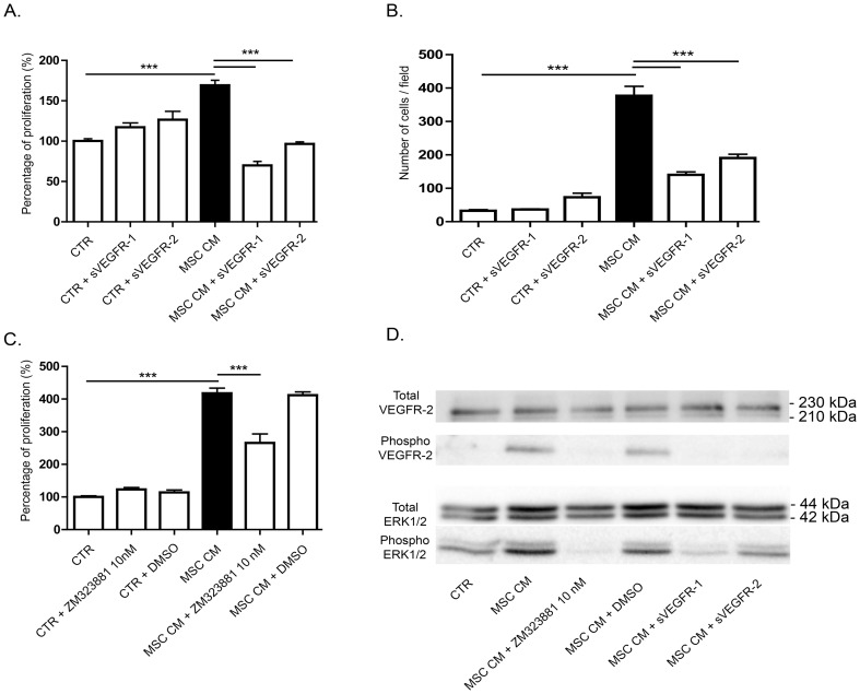 VEGF-A is an important factor implicated in LEC stimulation by MSC conditioned medium. (A, B) The trapping of VEGF-A by the addition of soluble receptors-1 and -2 decreased MSC conditioned medium-induced LEC proliferation, measured by WST-1 assay (A) and migration in a Boyden chamber assay (B). *** P