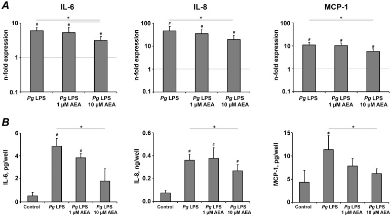 The effect of AEA on the production of pro-inflammatory mediators in hPdLCs in response to stimulation with P. <t>gingivalis</t> LPS. hPdLC were stimulated with P. gingivalis LPS in the presence or in the absence of AEA for 24 h, and the production of pro-inflammatory mediators was measured on gene and protein levels by real-time PCR (A) and ELISA (B) respectively. A – Changes in the gene expression levels of IL-6, IL-8, and MCP-1 calculated by 2 −ΔΔCt method taking non-stimulated cells as a reference (2 −ΔΔCt = 1) and β-actin as a house-keeping gene. B – Content of pro-inflammatory mediators in the conditioned media measured by ELISA. Each value represents the mean ± s.e.m of 4 independent experiments. # Means were significantly compared to the control group, and tested with analysis of variance (P