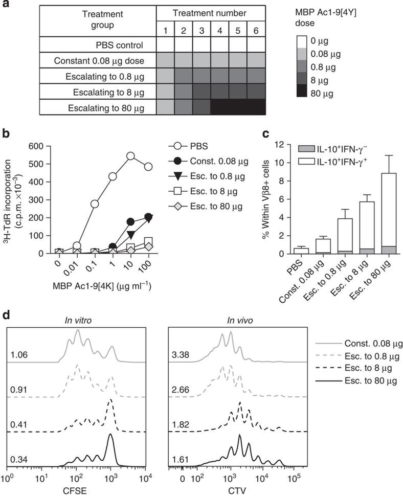 Dose escalation to higher peptide doses improves induction of a regulatory CD4 + T-cell phenotype. ( a ) Treatment groups for EDI with increasingly higher final doses. ( b ) Proliferative responses of CD4 + T cells from EDI-treated Tg4 mice cultured with irradiated antigen-presenting cells (APCs) and MBP Ac1-9[4K] for 3 days, measured by 3 [H] thymidine incorporation. Representative of three independent experiments each with two biological replicates assayed in triplicate. ( c ) Percentages of Vβ8 + T cells expressing IL-10 and IFN-γ after 6 days culture with 10 μg ml −1 MBP Ac1-9[4K], detected by flow cytometric analysis. Representative of two similar experiments, error bars show+s.e.m. of two biological replicates. ( d ) For in vitro suppression assay, in vitro -expanded CD4 + T cells from peptide-treated Tg4 mice cultured 1:1 with carboxyfluorescein succinimidyl ester (CFSE)-labelled responder CD4 + T cells, APCs and 10 μg ml −1 MBP Ac1-9[4K]. After 3 days, the proliferative response of CD4 + CFSE + responder cells was measured by flow cytometry. For in vivo suppression assay, 5 × 10 6 Cell Trace Violet (CTV)-labelled CD45.1 + Tg4 CD4 + T cells were transferred i.v. into EDI-treated Tg4 CD45.2 + mice. After 24 h, mice were injected s.c. with 80 μg of MBP Ac1-9[4Y]. Three days after peptide challenge, Cell Trace Violet-labelled CD45.1 + CD4 + cells were recovered from spleens for flow cytometric analysis. Data in each plot are representative of two biological replicates, offset histograms show proliferation dye dilution and division indexes.