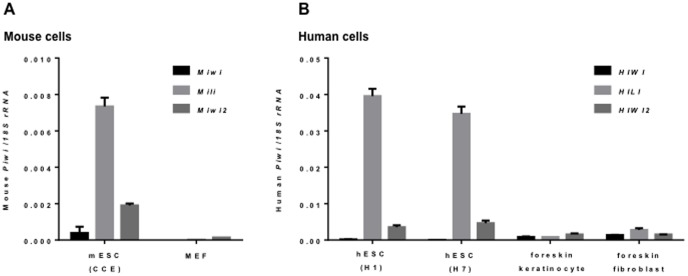 Expression of Piwi transcripts. qRT-PCR comparison of piwi expression in mouse cells (A) and human cells (B). RNA was isolated from mouse ESCs (CCE) and embryonic fibroblasts (MEF) and human ESCs (H1 and H7), human foreskin keratinocytes, human foreskin fibroblasts. The ratios of individual piwi genes/eukaryotic 18S rRNA are shown for both panels.