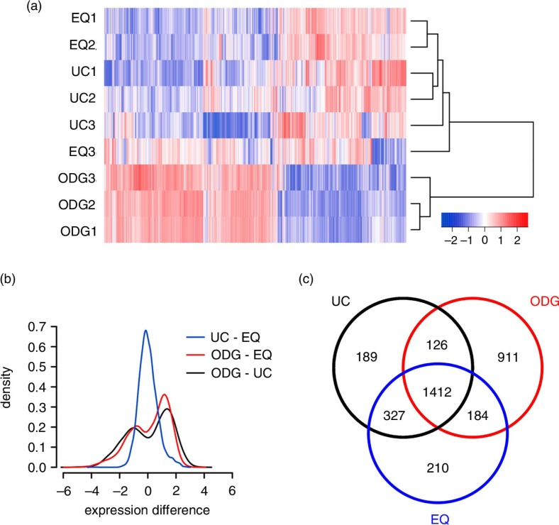 Agilent microarray-based RNA profiling of exosome samples. (a) Heatmap showing unsupervised hierarchical clustering of samples. Code from blue (−2 log2 normalized expression) to red (+2 log2 normalized expression) indicates RNA expression levels. NB: Replicates 1 and 2 are technical, 3 is biological. (b) Plot showing mean expression difference and corresponding density of probes for the 3 different methods. (c) Venn diagram of unique and shared mRNAs in UC, ODG and EQ samples.