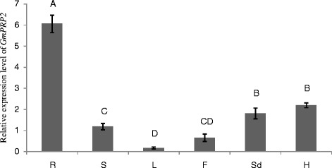 The expression level of GmPRP2 by qRT-PCR in different tissues. The relative expression level of GmPRP2 from real-time PCR was in different tissues. R, root; S, stem; L, leaf; F, flower; Sd, seed; H, hypocotyl. Data are the means of three replicates with SE shown by vertical bars. The capitals differ significantly by one-sided paired t test at P