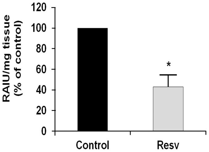 Effects of resveratrol on radioiodine uptake by the thyroid gland in vivo . Male Sprague-Dawley rats were treated with the control vehicle (Control, n = 6) or with 50 mg/kg/day resveratrol i.p. (Resv, n = 6), for 14 days. On the last day of treatment, the animals received [ 125 I]-NaI (185 kBq i.p., each) 24 h prior to sacrifice. Their thyroids were removed and weighed, with their associated radioactivity (RAIU) determined in a gamma counter. Data (from iodide uptake per thyroid weight) are normalized means ±SD (control vehicle, 100%). *, p