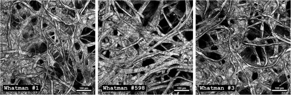 Substrate heterogeneity. Micrographs of Whatman filter paper showing highly heterogeneous fiber distribution, pores and channels, which make quantitative differentiation of inner structure properties and of cellulose area available for microbial adhesion not possible. Images taken with confocal reflection microscopy of paper chads sputter-coated with gold. In the current study we refer to biofilm 'real-estate' as the portion of the cellulose surface that is accessible to microbial adhesion.