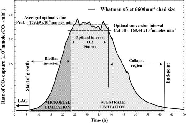 Model CO 2 profile. Typical measurement of changes in carbon dioxide production rates during microbial conversion of a Whatman #3 paper chad cut at 6600 mm 2 footprint area (value accounts for both sides of the paper). The working definitions established and used throughout this paper are labeled and delineated: the lag phase from the moment of inoculation varies between seven to nine hours; start of growth is considered at 5 × 10 -5 mmoles/min carbon dioxide rate and the fermentation end-point at 10 × 10 -5 mmoles/min; the initial growth period is termed the 'biofilm invasion' region, which ends when near-all of accessible surface area (i.e., the 'real estate') of the paper has been colonized; it is followed by a 'plateau region' of stable, and maximal carbon dioxide output where biofilms advance through the depth of the paper chads (new surfaces become available at the same rate that colonized surfaces are depleted); the last 'degradation' region is characterized by rapid loss of available surface and chad integrity.
