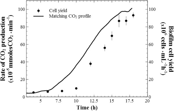 Biofilm to planktonic cell yield. Numbers of cells in reactor effluent as indication of biofilm-to-planktonic cell yield and corresponding (matching) CO 2 production rate during the microbial limitation period and a few hours into plateau.