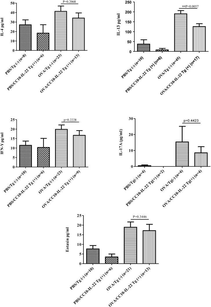 Effect of IL-22 (CC10-IL-22) on cytokine and chemokine production in OVA-induced allergic asthma. Th1 cytokine, IFN-γ, and Th2 cytokines, IL-4 and IL-13, Th17 cytokine IL-17A, and chemokine eotaxin in the BAL were measured by ELISA. The number of animals in each group was indicated and data were shown as Mean±SEM. ** P