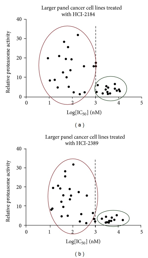 """The sensitivity of cancer cell lines to Nek2 inhibitors is correlated with their proteasome activity. (a) Cell lines sensitive to HCI-2184 treatment had, on average, higher proteasome activity compared to resistant cell lines. (b) Cell lines sensitive to HCI-2389 treatment had, on average, higher proteasome activity compared to resistant cell lines. These cancer cell lines were selected from the 150 cell lines in our lab, based on whether or not they were sensitive to both HCI-2184 or HCI-2389. """"Sensitive"""" was defined as an IC 50 value of 1 μ M or lower. The 26S proteasomes were isolated by ultracentrifugation and proteasome activity measured by Proteasome-Glo Assay."""