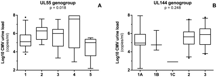 Log 10 CMV urine load in both postnatally and congenitally infected infants with respect to UL55 genotypes (A) and UL144 genotypes (B). Bar in boxplot represents median viral load after log 10 transformation. Upper and lower limit of boxplot represent 75 th and 25 th percentile, respectively. Whiskers represent 5–95% coincidence interval. Dots represent outliers.