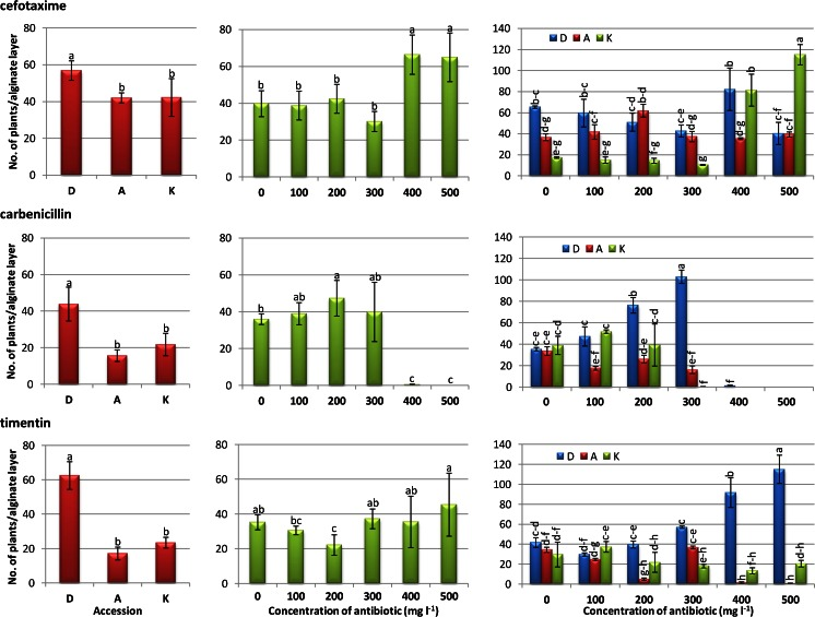 Effect of β-lactam antibiotics on plant regeneration of different carrot accessions from cefotaxime-, <t>carbenicillin-,</t> and timentin-containing protoplast culture media. Bars represent the standard error. D 'Dolanka', A 'Amsterdamska', K 'Koral'. Means denoted by different letters are significantly different ( P ≤ .001).