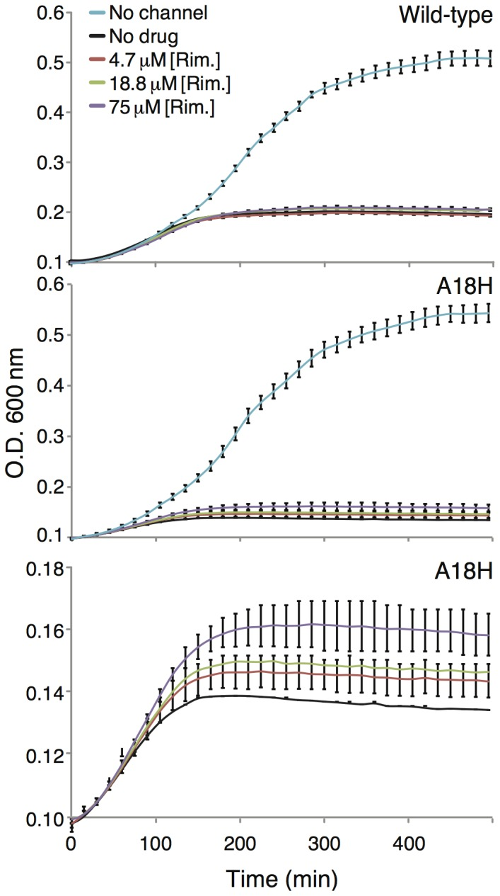 Growth curves of <t>DH10B</t> bacteria expressing wild-type Vpu (top) or the A18H mutant (middle and bottom) as a function of different rimantadine concentrations. The bottom panel is an expansion of the middle panel.