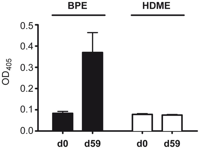 No cross-reactivity between bGST and HDM-GST. (A) <t>IgG1-reactivity</t> of sera (n = 3) collected from bGST-immunized mice at day 0 and day 59 to BPE and HDME. (B) <t>IgE-reactivity</t> of seven Der p 8-sensitized HDM-allergic patients to bGST and HDME. NHS, non-allergic control sera; O.D. optical density; dotted and dashed lines indicate the cut-off for positive IgE-reactivity.