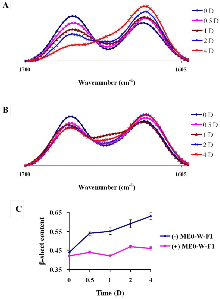 Inhibitory effects of ME0-W-F1 on the transformation of secondary structure of Aβ42 by FT-IR. A: Aβ42 alone; B: Aβ42 with ME0-W-F1; C: change in β-sheet content during incubation with (+) or without (−) ME0-W-F1. Time: 0, 0.5, 1, 2 and 4 days. Values represent mean ± SD of three separate experiments.
