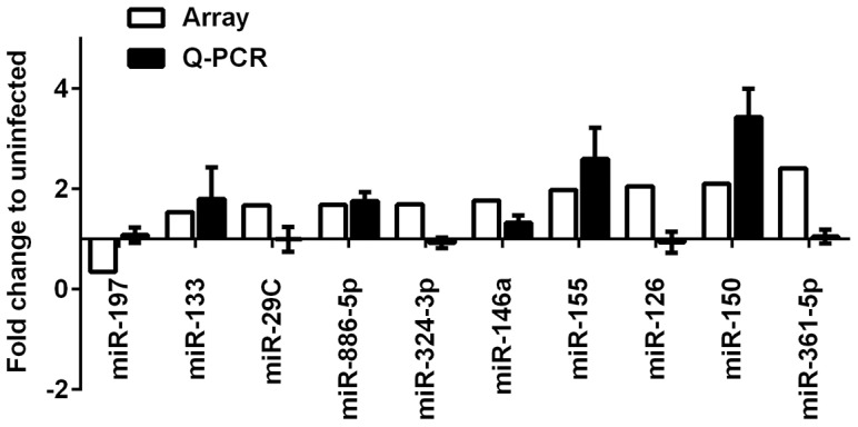 Validation of the TLDA results by qRT-PCR analysis. The relative abundance of differentially expressed microRNAs was determined using individual Taqman microRNA assays, and results were normalized to the internal control RNU48. Data shown are the mean ±SEM from four independent experiments.