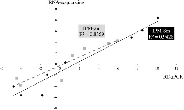 Validation of the transcriptome results. The transcriptomic results obtained through RNA sequencing were validated using qualitative RT-PCR (RT-qPCR) analysis. The level of differential expression of eight genes was compared, showing a correlation between RNA sequencing (Y-axis) and RT-qPCR analysis (X-axis). The level of differential expression between A. baumannii ATCC 17978 and their mutants is given as Log 2 -values. R 2 , the coefficient of determination.