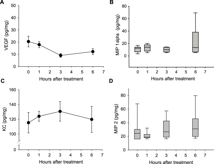 The effect of CA4P treatment on cytokine levels in C3H mammary carcinomas in CDF1 mice. A) VEGF, B) MIP-1α (CCL3), C) KC (CXCL1), and D) MIP-2 (CXCL2) concentration in tumors as a function of hours after treatment with 25 mg/kg CA4P and in tumors from saline-treated mice. A) and C) Data is presented as mean ± SEM. B) and D) Data is presented as the median (horizontal bar), the 25 th and 75 th percentile (bottom and top of boxes) and the 10 th and 90 th percentiles (error bars). For all data n = 10.