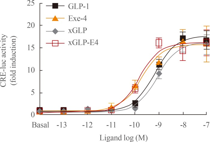 Potency of glucagon-like peptide-1 (GLP-1) analogs toward GLP-1 receptor (GLP1R). Ligand potencies of GLP-1 analogs were examined using HEK293T cells expressing GLP1R. Cells were treated with increasing concentrations of GLP-1 analogs for 6 hours, and luciferase activity was measured. The data on the sigmoidal curves and EC 50 values are presented as means±standard error of the mean of at least three independent experiments. CRE-luc, cAMP response element-luciferase; xGLP, Xenopus GLP-1.