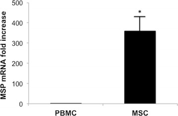Semiquantitative MSPmRNA expression in PBMC, MSC in basal condition evaluated by reverse transcription (RT)–PCR that used 1 mg of RNA as the template. PBMC known for their capacity to produce MSP were used as controls. Columns indicate MSP mRNA expression normalized to the beta-actin expression and converted into fold change. *p