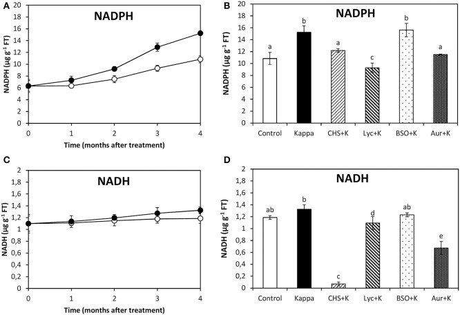 Effect of inhibitors on NADPH synthesis after treatment with OC kappa . Levels of NADPH (A) and NADH (C) in control Eucalyptus trees (empty circles), in trees treated with OC kappa (black circles) and cultivated for 0–4 months without additional treatment. Level of NADPH (B) and NADH (D) in control Eucalyptus trees (control), in trees treated with OC kappa (kappa) and in trees treated with CHS-828 and OC kappa (CHS+K), lycorine and OC kappa (Lyc+K), buthionine sulfoximine and OC kappa (BSO+K), and auranofin and OC kappa (Aur+K) and cultivated for 4 months without additional treatment. NAD(P)H levels are expressed in micrograms per gram of fresh tissue (FT). Symbols and bars represent mean values of three independent experiments and letters indicate significant differences ( p