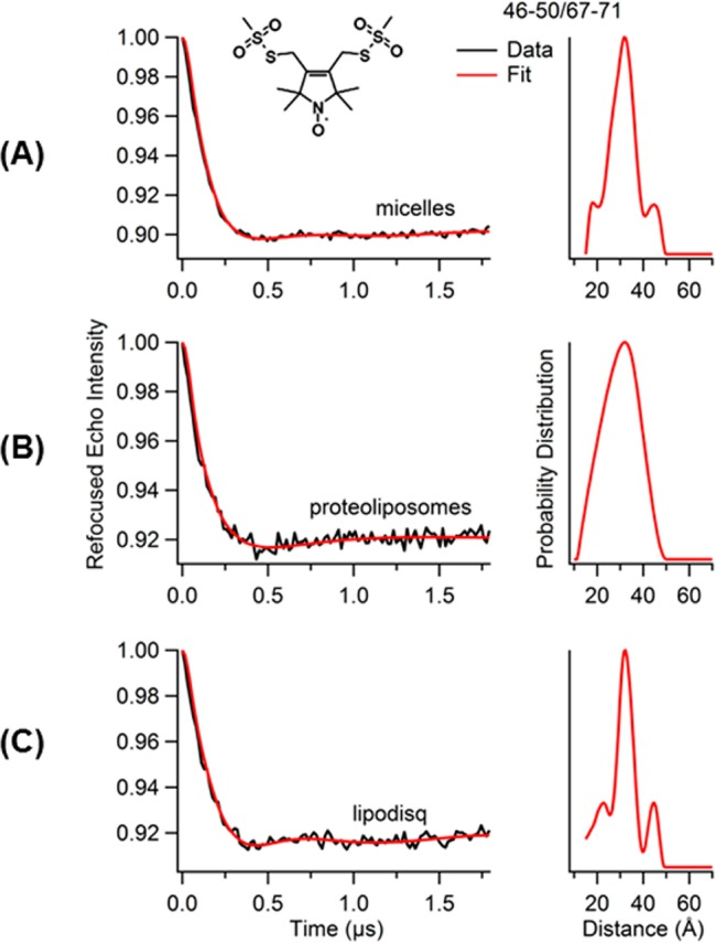 Four-pulse Q-band DEER data of KCNE1 mutants (Tyr46–Val50/Arg67–Leu71) bearing two BSLs. Background-subtracted dipolar evolutions of the indicated mutants (left) and their corresponding distance probability distributions from Tikhonov regularization are shown (right) for conditions of (A) 1% LMPG micelles, (B) proteoliposomes (POPC/POPG = 3:1), and (C) lipodisq nanoparticles.