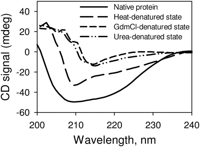 Secondary structural characteristic of various denatured states of RNase-A at pH 7.0. The GdmCl- and urea- induced denatured states were generated using 6.5 M GdmCl and 8.5 M urea respectively. The heat induced-denatured state was generated by incubating the protein at 85°C for 15 minutes.