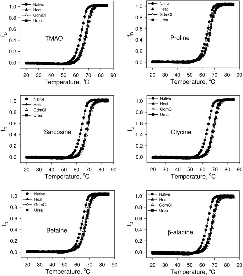 Effect of osmolytes on the stability of folded RNase-A at pH 7.0. Representative thermal denaturation curves of folded RNase-A obtained from refolding of various denatured states in the presence of 1 M osmolytes. Denaturation curves of the refolded RNase-A (from heat-, GdmCl-, urea-induced denatured states) in the absence of osmolytes are identical with the native (without refolding) transition curve. Therefore, we have shown only the transition curve of the native (without refolding) protein.