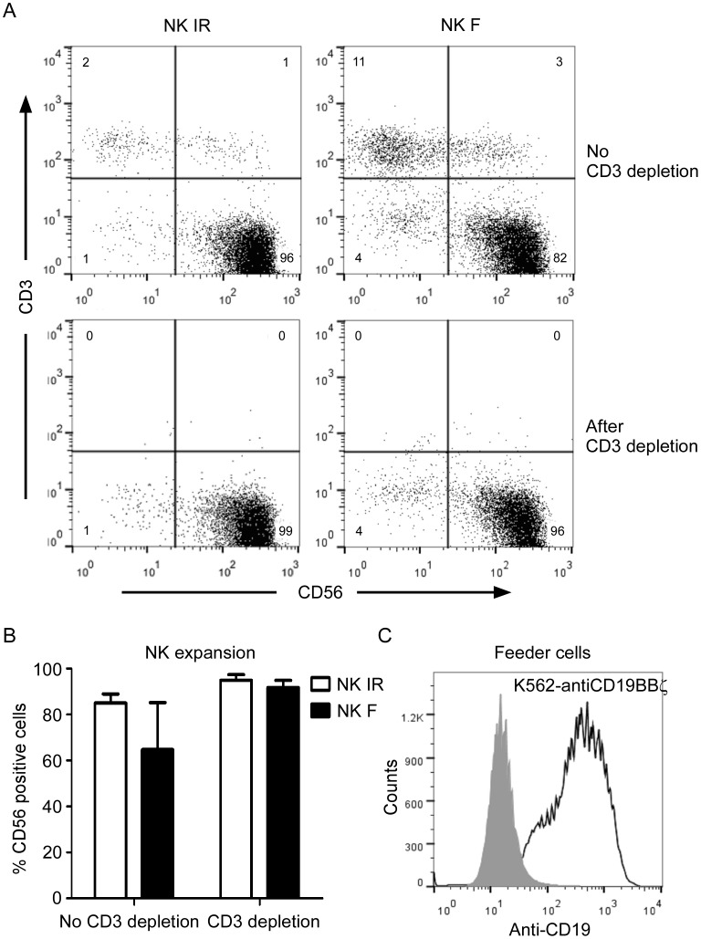 Immunophenotypic features of expanded NK cells (acceptor cells) and K562-antiCD19BBζ cells (feeder cells). A. Expression of CD56 and <t>CD3</t> on peripheral blood mononuclear cells from a healthy donor was examined after 1 week (top row) of co-culture with irradiated (IR, left column) or freeze/thaw-treated (F, right column) K562-mb15-41BBL cells at a low dose (10 U/mL) of IL-2. The T cells were removed using CD3 <t>Dynabeads,</t> generating cell populations comprising > 95% CD56+CD3- NK cells (bottom row). B. Percentage of CD56-positive cells within NK cells expanded by co-culturing with irradiated (IR) or freeze/thaw-treated (F) K562-mb15-41BBL cells prior to and after CD3 depletion on day 7. The data are presented as the mean of values obtained using 3 unrelated NK donors. Error bars represent the SD. C. Histogram illustrating the anti-CD19 expression on K562 cells (control, shaded histogram) and K562-antiCD19BBζ cells (feeder cells, open histogram).