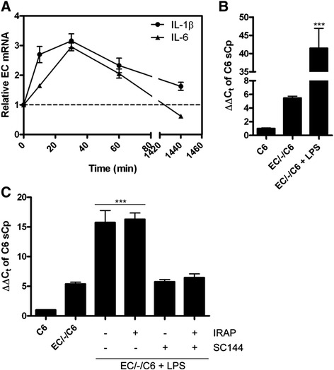 <t>LPS-induced</t> activation of hBMVEC basolateral iron efflux through modulation of hBMVEC interleukins with subsequent C6 glioma cell sCp gene activation. (A) LPS (100 μg/mL) was added to hBMVEC for the times indicated before total hBMVEC RNA was collected and assayed for IL-1β and IL-6 transcript abundance via qPCR. (B) Total RNA was isolated from C6 glioma cells seeded distal to hBMVEC incubated with or without the addition of LPS (100 μg/mL) to the apical chamber for 24 h. Soluble Cp transcript abundance was assessed via qPCR. (C) C6 glioma cells were incubated alone or distal to hBMVEC for 20 h prior to the addition of LPS (100 μg/mL) to the apical chamber and IRAP (1 μg/mL) and/or <t>SC144</t> (20 μM) to the basal chamber for an additional 4 h as indicated. Total C6 glioma RNA was isolated and assayed for sCp transcript abundance via qPCR. Significance of the data was determined using either a paired t-test or one-way ANOVA statistical analyses. ***P