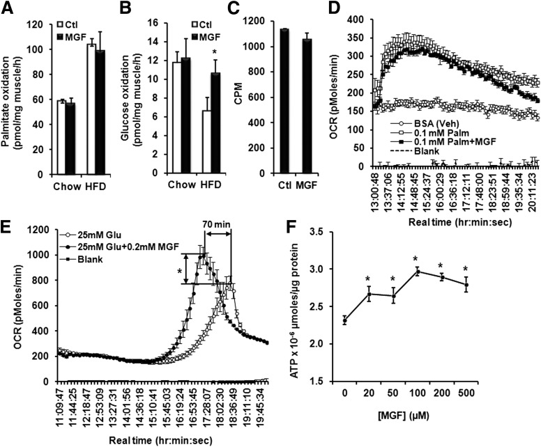 MGF stimulates glucose oxidation. Palmitate ( A ) and glucose ( B ) oxidation was measured after a 12-h fast in soleus muscle isolated from mice fed with CD or HFD, with or without 0.5% MGF, for 18 weeks ( n = 6–7). C : [ 14 C]-labeled oleic acid oxidation in C2C12 myotubes pretreated or not with 200 μmol/L MGF for 16 h. Palmitate ( D ) and glucose ( E ) oxidation in C2C12 myotubes measured by Seahorse Bioscience Metabolic Flux analyzer. Myotubes differentiated from C2C12 cells in XF24 microplates were incubated overnight in glucose-free and sodium pyruvate–free DMEM, with or without 200 μmol/L MGF. OCR was recorded after injection of vehicle ( D ), BSA-conjugated palmitate ( D ), or d -glucose ( E ) into wells, with or without 200 μmol/L MGF. F : Intracellular ATP levels in C2C12 myotubes incubated overnight in glucose-free and sodium pyruvate–free DMEM in the presence of various concentrations of MGF and then incubated in media containing 25 mmol/L glucose with matching concentrations of MGF for 8 h. ATP was determined using the CellTiter-Glo Luminescent Cell Viability Assay kit according to the manufacturer's instructions (Promega). In vitro experiments were conducted three to four times and each time with triplicates for each condition. Values are average ± SEM. * P