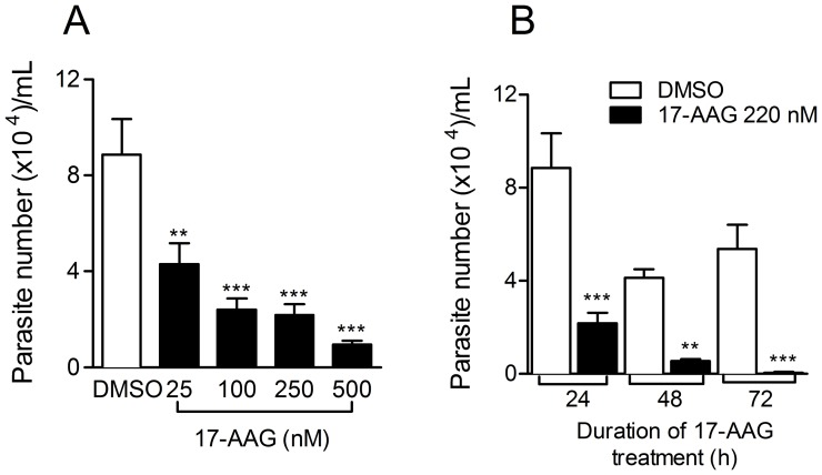 Treatment with 17-AAG reduces intracellular L. (V.) braziliensis viability. L. (V.) braziliensis - infected macrophages were treated for 24 h with increasing concentrations of 17-AAG or with vehicle alone (DMSO). The number of viable parasites was evaluated by further culture (5 days) in Schneider medium, free of 17-AAG (A). Infected macrophages were treated with 220 nM (IC 50 ) of 17-AAG for 24–72 h. The number of viable parasites was evaluated by further culture for five days in Schneider medium, free of 17-AAG (B). Data, shown as mean ±SEM, are from one of two independent repeats (** p