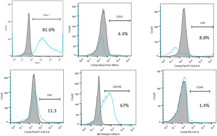 Flow cytometric analyses of CPC cells for expression of the cell surface markers Sca-1, CD31, c-kit, Flk-1, CD105 and CD45.
