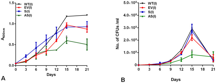 Effect of altered expression of Rv1211 on growth kinetics of M. tb in vitro . Cultures were induced with 0.2% acetamide and growth was monitored by measuring A 600nm (A) and by CFU assay (B). Graph depicts growth kinetics of M. tb <t>H37Rv</t> (WT) , M. tuberculosis-pJFR19 (EV), M.tb-Rv1211S and M.tb-Rv1211AS for period of 21 days. Data was considered significant (*) if p