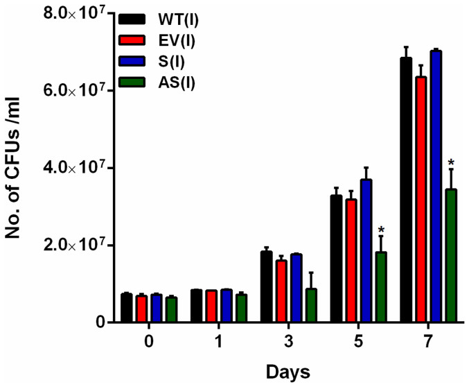 Effect of altered expression of Rv1211 on growth of M. tb ex vivo . THP-1 cells were infected with induced cultures of M. tb H37Rv (WT) , M. tb-pJFR19 (EV), M.tb-Rv1211S and M.tb-Rv1211AS separately. Intracellular growth and survival was monitored by enumerating CFUs as given in the materials and methods. Graph depicts intracellular growth kinetics of M. tb H37Rv (WT) , M. tbs-pJFR19 (EV), M.tb-Rv1211S and M.tb-Rv1211AS over a period of 7 days post infection. Data was considered significant (*) if p