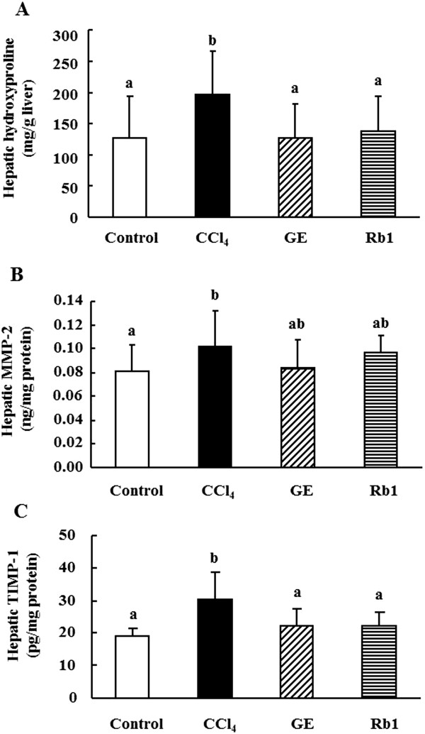 Effects of ginsenosides extract and ginsenoside Rb1 on liver fibrosis markers in rats. A : hepatic hydroxyproline level, B : MMP-2 level; C : TIMP-1 level. Data are presented as mean ± SD (n =10). Values not sharing the same letter differ significantly ( p