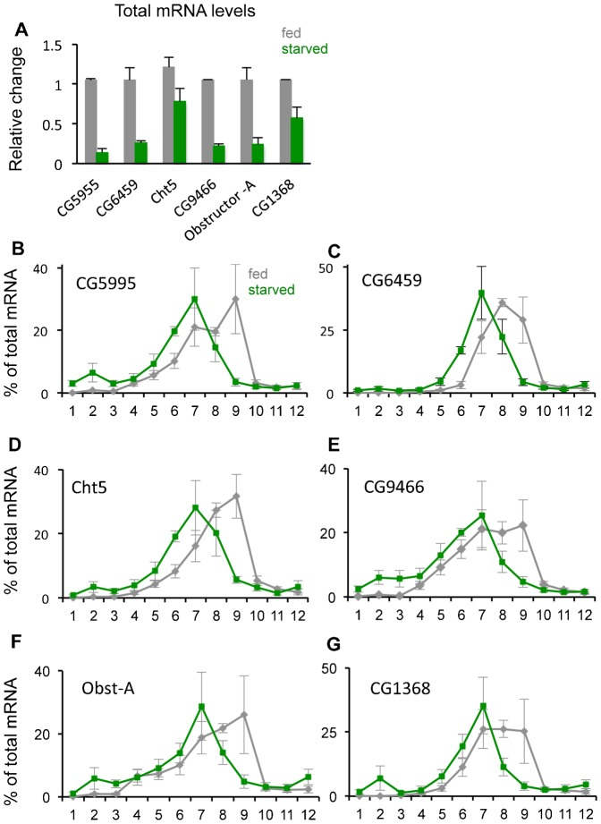 Translational control of genes whose total mRNA levels are decreased by starvation. (A) Total mRNA levels of each of the six genes were measured by qRT-PCR in fed vs. 18 hr starved larvae. Data are presented as mean ± SEM. (B–G) qRT-PCR analysis of each of the six selected genes. Each data point in the figure shows the mean (± SEM) % of total mRNA in each of the twelve fractions. Grey bars, fed larvae; green bars, starved larvae.