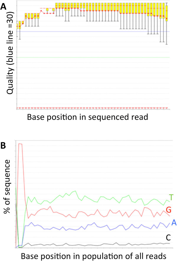 Illumina HiSeq2000 QC of one representative sample. A) Raw quality scores (FASTQ) of reads from one bisulfite treated library (G12; lane 6). B) Graph showing the representation of each base at each position in a 50 base read. Notice the very low level of Cytosine residues compared to the high content of Adenosine residues; non-bisulifte converted DNA shows approximately equal base composition at each site. One metric of C-T conversion rate is the ratio of C residues at bases 1–10 and 40–50. In the graph above, this ratio is about 1, as expected. In RRBS libraries, a large increase in Guanidine at positions 2 and 3 (~95% of reads have GG at these positions) should also be observed.