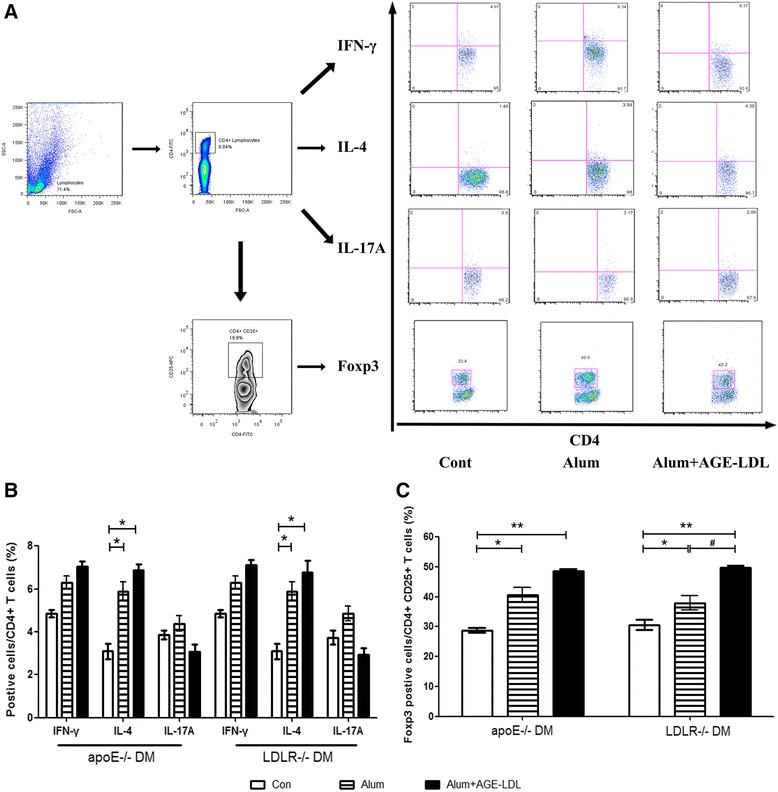 T cell subsets in spleen after immunization. A . Flow <t>cytometry</t> analysis strategies of T cell subsets in spleen, B and C . Levels of T cell subset are shown as percentages of <t>cytokine</t> producing cells (Interferon-γ, IL-17 and IL-4) per CD4+ T cells, and FoxP3 positive cells per CD4+ CD25+ T cells stimulated with AGE-LDL for each of the three groups (white bars = controls, bars with stripes = Alum adjuvant and black bars = AGE-LDL + Alum adjuvant, n = 10 per group). *indicates p