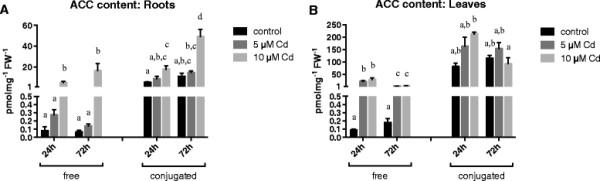 ACC content. ACC content (free and conjugated; pmol mg −1 FW −1 ) in roots (A) and leaves (B) of 3 weeks old Arabidopsis thaliana plants exposed for 24 or 72 h to either 5 or 10 μM CdSO 4 or grown under control conditions in a hydroponic culture system. Data are given as mean ± s.e. of at least 5 biological replicates. The letters a-d (A) a-c (B) represent groups with significantly different amounts of ACC (Tukey's test: p