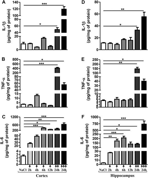 Pro-inflammatory cytokine levels after acute LPS-induced inflammatory stress. IL-1β, TNF-α and IL-6 levels in cortex ( A , B , C , respectively) and hippocampus ( D , E , F , respectively) of mice treated with a single () or two () or three () i.p. injections of LPS at 10 mg/kg or vehicle (0.9% NaCl) were measured by ELISA assay. Mice were sacrificed 2, 4, 6 or 12 h after a single injection or 24 h after two or three injections. Cytokine levels were expressed in pg/mg protein. Results are mean ± SEM for 6 mice in each group. *p