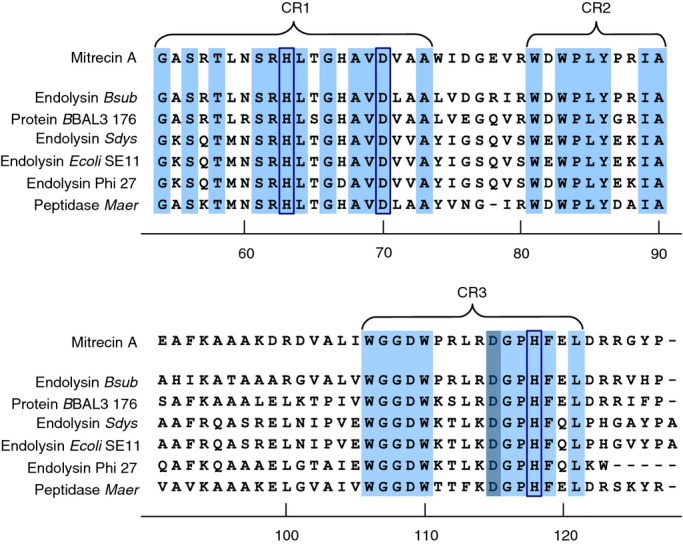 Conserved architecture of the C-terminal catalytic region of Mitrecin A as compared to other similar carboxypeptidases. C-termini of sequences with similarity to Mitrecin A ( Fig. 1 ), identified in MEROPS Blast searches, were aligned against the Mitrecin A C-terminus using the <t>clustalw</t> multiple alignment tool. Conserved amino acid residues and motifs within the C-terminal M15 peptidase subfamily domains as aligned against Mitrecin A are shaded in light blue. Conserved region 1 (CR1), conserved region 2 (CR2), and conserved region 3 (CR3) are indicated. Histidine (H) and aspartic acid (D) residues, inferred by analysis in MEROPS to be necessary for interaction with the metal ion of the catalytic site binding pocket, are enclosed in boxes. The active site residue is shaded in dark blue.