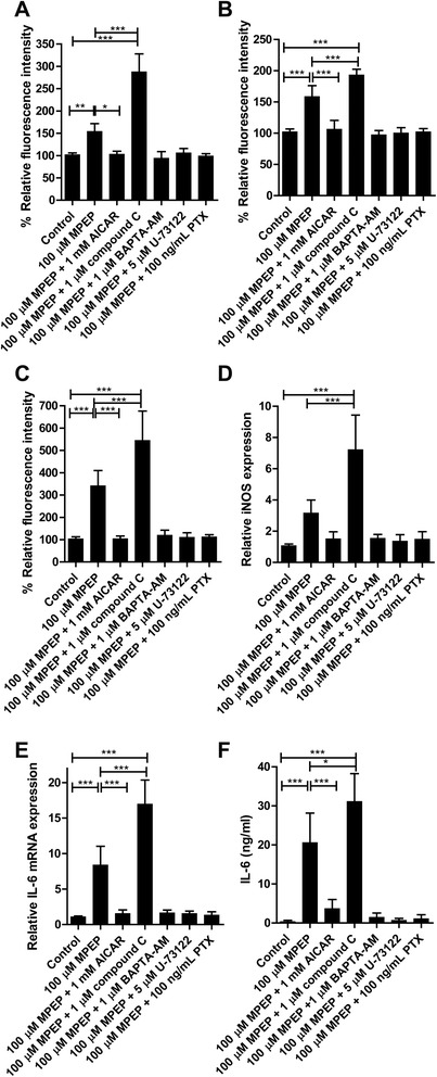 Prevention of cellular stress and inflammatory mediators by interference with intracellular signaling. BV-2 cells were pretreated for 1 hour with 1 μM compound C, 1 μM BAPTA-AM or 5 μM U-73122, or for 6 hours with pertussis toxin (PTX) (100 ng/mL) prior to incubation with 100 μM MPEP for 24 hours. (A) Intracellular reactive oxygen species (ROS) levels were determined using dihydroethidium (DHE). (B) Mitochondrial mass was measured using MitoTracker®Red CMXRos. (C) Mitochondrial superoxide levels were detected using MitoSOX Red. The mRNA expression of inducible oxygen species (iNOS) (D) and IL-6 (E) were determined by quantitative PCR and values were normalized to GAPDH mRNA control. (F) IL-6 protein expression was measured by ELISA. Results represent the mean ± SD of at least three independent experiments. Significance was tested by one-way ANOVA followed by Tukey's test. * P