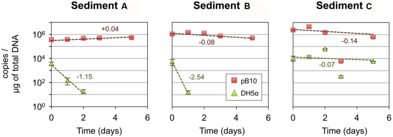 Stability of plasmid pB10 and Escherichia coli DH5α in three river sediment microcosms (A–C) . Numbers indicate rate of disappearance (expressed in log per day) calculated from an exponential curve fit of the data (dotted lines). Each data point is an average of three values obtained from triplicate qPCR reactions, error bars represent standard deviation. Part of the data were presented previously in Bonot and Merlin (2010) .