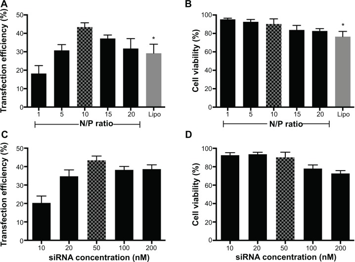 Optimization of Arg-G4-based gene silencing. Notes: ( A ) Arg-G4-siRNA transfection efficiency in MSCs at various N/P ratios using Lipofectamine 2000 as a control. ( B ) Cell viability in MSCs during transfection at various N/P ratios using Lipofectamine 2000 as a control. ( C ) Arg-G4-siRNA transfection efficiency in MSCs using various siRNA concentrations. ( D ) Cell viability in MSCs during transfection using various siRNA concentrations. * P