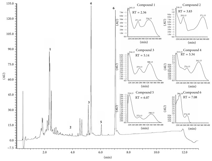 <t>RP-UPLC-DAD</t> profiles of hydroethanolic extract of B. trimera . Conditions: CHS130 100 RP-18 column (1.7 μ m, 50 × 3 mm i.d.). Elution was carried out with a linear gradient of water 0.1% formic acid (A) and acetonitrile 0.1% formic acid (B) (from 5% to 95% of B in 11 min) and the UPLC fingerprints were registered on a <t>ACQUITY</t> Waters apparatus with a UV-DAD detector (Waters 2996). Operating parameters of the mass spectrometer were capillary temperature 320°C; spray needle voltage set at 3.50 kV; ES capillary voltage +3 and −47 V for positive and negative polarity, respectively; and tube lens offset 0 and −25 V for positive and negative polarity, respectively. Nitrogen was used as a sheath gas with a flow of 50 arbitrary units. Mass analysis was carried out in full-scan mode from 100 to 1.500 amu, in both positive and negative mode. UV spectra (190–450 nm) from the main peaks are shown inside on the chromatogram.